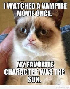 Grumpy cat watched vampires movies | Funny Pictures | Funny Quotes | Funny Jokes – Photos, Images, Pics