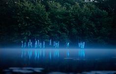 Landscape Light Installations by Barry Underwood