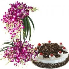 Orchid Bouquet With Black forest