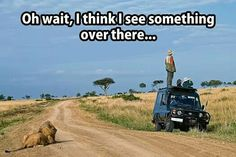 Safari: you're doing it wrong