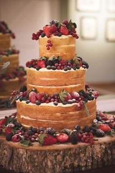 Naked Cake Rustic Berries Elegant Luxe Red Blue Winter Wedding http://www.bennicarolweddingphotography.com/