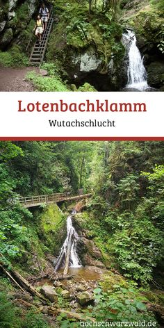 Lotenbachklamm in 2019 Great Places, Places To See, Beautiful Places, Black Forest Germany, Wanderlust Travel, Outdoor Activities, Trekking, Outdoor Gardens, Travel Destinations