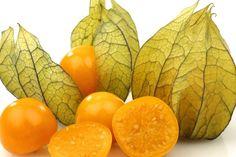 Resultado de imagem para frutas do sul do brasil, phisalis