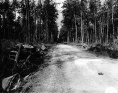De l'équipement allemand détruit, gît dans le fossé d'une route, poussé par les alliés au cours de leur progression, le Molay Littry