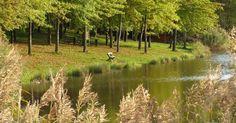Felejtsd el a Balatont - 5 hazai tó, ahol nincs tömeg! | Page 2 | Femcafe