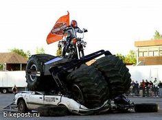Wildcat Harley-Davidson serves London, Lexington, Williamsburg, Hazard, Richmond, Berea and Somerset of Kentucky.