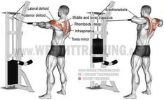 Standing cable rear delt row with rope. A compound exercise. Synergists: Infraspinatus Teres Minor Lateral Deltoid Middle and Lower Trapezius Rhomboids Brachialis and Brachioradialis. Fitness Gym, Physical Fitness, Body Fitness, Fitness Motivation, Female Fitness, Fitness Workouts, Fitness Quotes, Fitness Goals, Corps Fitness