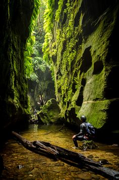 In another world, Claustral Canyon in the Blue Mountains / Australia (by VernsPics). Outback Australia, Australia Travel, Australia Funny, Sydney Australia, Beautiful World, Beautiful Places, Blue Mountains Australia, Wow Art, Adventure Is Out There