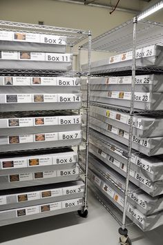 Just in time for the Washington, D. area's first cold snap of museum staff have turned on the walk-through freezer at the conservation and collections resource center for an inaugural object freezing! Here Chief Conservator Esther Méthé and. Art Storage, Storage Boxes, Locker Storage, Storage Ideas, Art History Major, Music Museum, Textile Museum, Museum Displays, Textiles