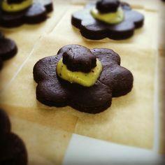 Chocolate Chaga cookies!