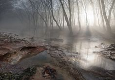 Photo Morning Mist by Adrian Borda on 500px