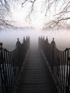 Into the fog by raindog, via Flickr