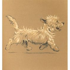 Mac 1912 Trotting along Canvas Art - Cecil Aldin (18 x 24)