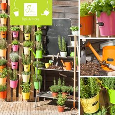 These J-line Tips & Tricks will help you to make your own vertical garden!  See all the tips on our website: http://www.j-line.be/en/News/102942/
