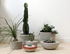 Bowl Ilha - Vaso em cimento produzido artesanalmente. Ideal para cultivar terrários.