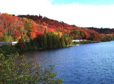 northern ontario - that's my train and my job! Anxious to see those beautiful fall colors next week! Train Tour, Canada Eh, 10 Picture, What A Wonderful World, Train Rides, Going Home, Wonders Of The World, Ontario, Traveling By Yourself