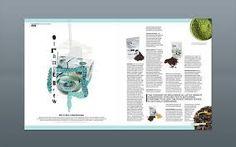 Image result for magazine design