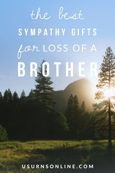 Here are the ten best sympathy gifts for loss of a brother. When someone you care about is grieving the loss of a sibling, here are some very thoughtful and meaningful gifts you can send. #sympathygifts #death #grief Funeral Memorial, Memorial Gifts, Diy Memory Album, Funeral Etiquette, Photo Lamp, Memory Tree, Funeral Urns, Funeral Arrangements, Grief Loss