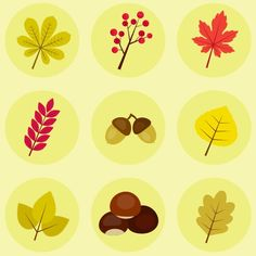 How to Create Autumn Leaves, Berries and Chestnut Icons in Adobe Illustrator - Tuts+ Design & Illustration Tutorial