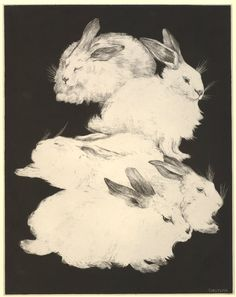 Five Angora Rabbits - THEO VAN HOYTEMA - lithograph with embossing printed on chine appliqué Rabbit Illustration, Illustration Art, Nature Illustrations, Rabbit Tale, Art Nouveau, Japanese Folklore, Angora Rabbit, Black Tree, Bunny Art