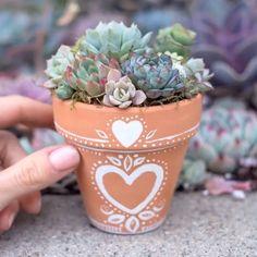 Dica para deixar seus vasinhos ainda mais lindos ❤️ @botanicalbright