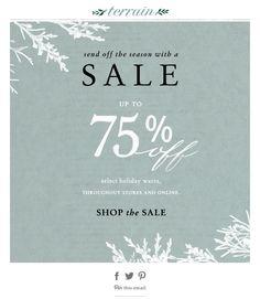 evergreen, winter sale