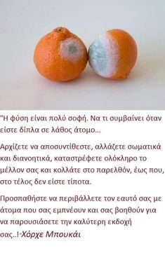 Fruit, Quotes, Life, Quotations, Quote, Shut Up Quotes