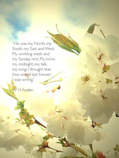"""Funeral poem from Four Weddings  and a Funeral  """"He was my North, my South, my East and West, My working week and my Sunday rest, My noon,my midnight, my talk,my song;  I thought that love would last forever: I was wrong.""""  W H Auden"""