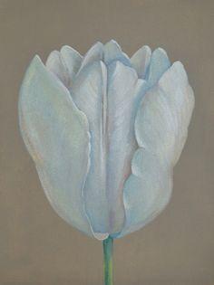 Портреты цветов