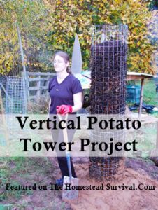 The Homestead Survival | Vertical Potato Tower Gardening Project | http://thehomesteadsurvival.com
