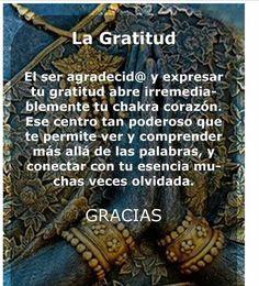 〽️ La Gratitud...