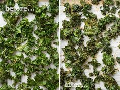 Kalechips - 6 Tips for Flawless Kale Chips + All Dressed Kale Chips recipe