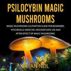 Psilocybin mushrooms, often called magic mushrooms or shrooms, might soon be partially legal, or at least decriminalized, in several states. Here's how to trip safely. Mushroom Guide, Mushroom Grow Kit, Mushroom Tea, Growing Psychedelic Mushrooms, Growing Mushrooms At Home, Psilocybin Mushroom, Psychedelic Experience, Adventure Aesthetic, Herbal Magic