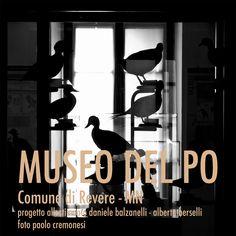 Museum in Revere #Museum #design #daniele  balzanelli #Revere #allestimento #outfitting