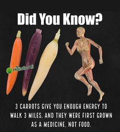 Have you had Heirloom Carrots❓❓ All colors and varieties of carrots contain fiber as well as healthy vitamins and minerals, with some… Health Facts, Health And Nutrition, Health And Wellness, Health Fitness, Health Logo, Health Goals, Health Quotes, Women's Health, Health Motivation