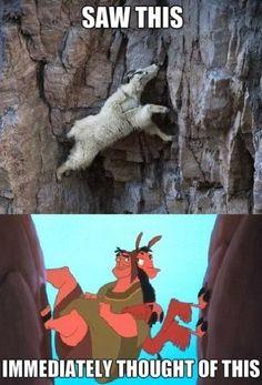 Llama - www.meme-lol.com