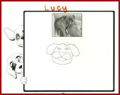 Meet Lucy by Makyala. Lucy is nervous, scared and depressed but loving. She will need an extra special family.