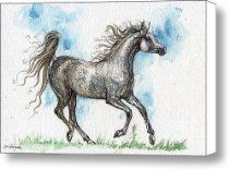 galloping Grey arabian mare watercolor painting Canvas Print / Canvas Art - Artist Angel Tarant...