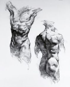 Exceptional Drawing The Human Figure Ideas. Staggering Drawing The Human Figure Ideas. Human Anatomy Drawing, Body Drawing, Life Drawing, Drawing Faces, Male Figure Drawing, Figure Sketching, Anatomy Sketches, Art Sketches, Art Drawings
