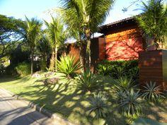 Jardim de agaves e coqueiros.