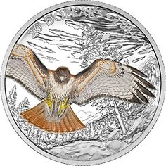 2016 CA majestic animal REGAL RED TAILED HAWK Majestic Animal Silver Coin 20$ Canada 2016 Dollar Perfect Uncirculated – World Gold Coin Collector