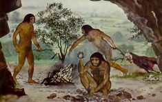 Paleolítico y Neolítico - Curso de Historia Primer Año Fight Or Flight, Staying Alive, Evolution, Survival, History, Painting, Life, Humanoid, Mind Maps
