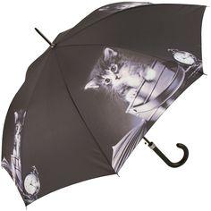 Photographic Cats Walking Length Umbrella - Sweet Kitten - Brolliesgalore