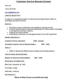 Provide Professional Resume Writing Services  Professional Resume