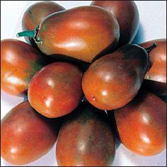 Tomato, Black Plum