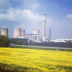 Black and gold coal and rapeseed. En route to Sutton Bonington @uniofnottingham @uonsustainability