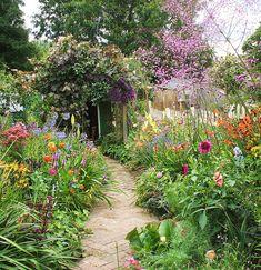 I want my very own native wildflower garden one day, so that I may bring in some butterflies! English Country Gardens, Dream Garden, Home And Garden, Garden Plants, Colourful Garden, Cottage Gardens, Garden Gate, Patios, Walkways