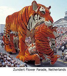 MARCHING.COM: Bloemencorso Zundert and European flower parades ...