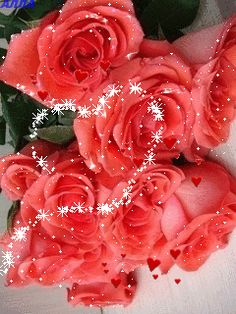 Hearts and Roses Beautiful Rose Flowers, Romantic Flowers, Beautiful Gif, Beautiful Flowers, Morning Rose, Good Morning Gif, Good Morning Flowers, Rose Flower Wallpaper, Flowers Gif