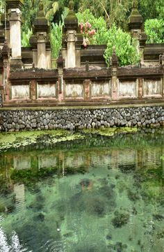 "Pura Tirta Empul is a water temple located in the village of Manukayu. The name of the temple means ""holy water spring"" in Balinese. Temple Bali, Water Temple, Spring Water, Photo Contest, Holi, Photo And Video, Mansions, Architecture, House Styles"